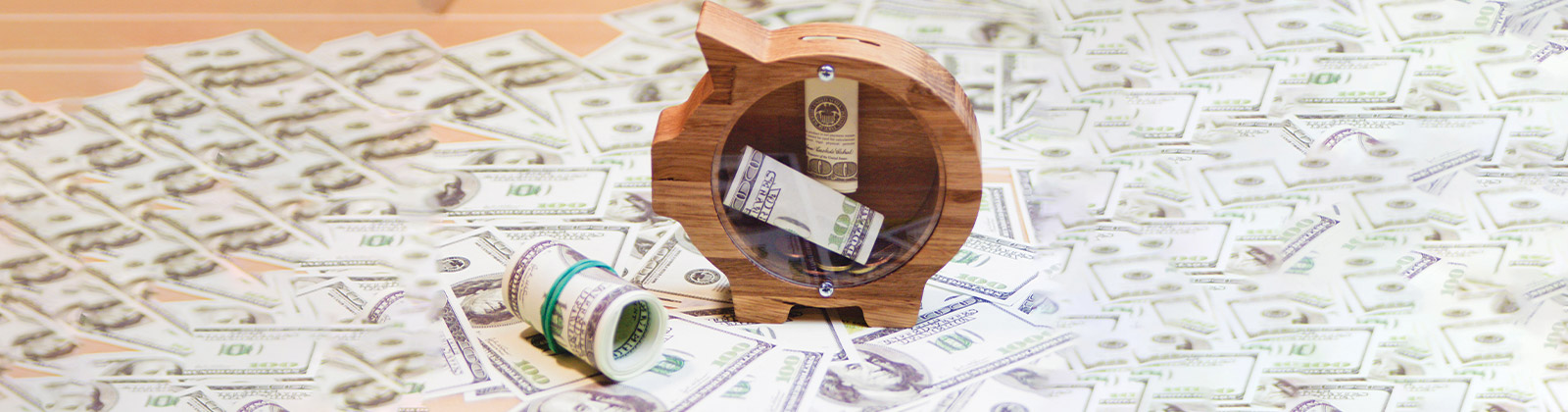 Wooden Piggy Bank and Cash